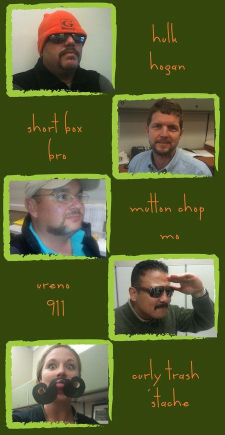 Team Gibson- Movember