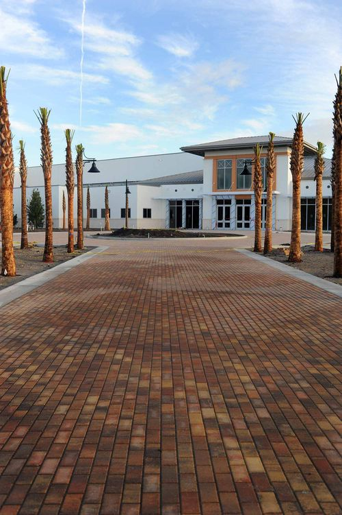 Jekyll Island Convention Center - Palm Allee - Gibson Landscape